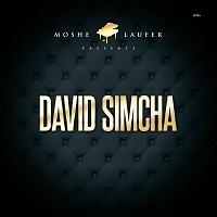 cd album david simcha